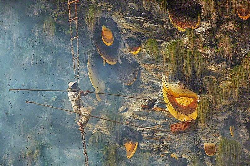 Nepal Honey Hunting Tour with best local Tour Guide